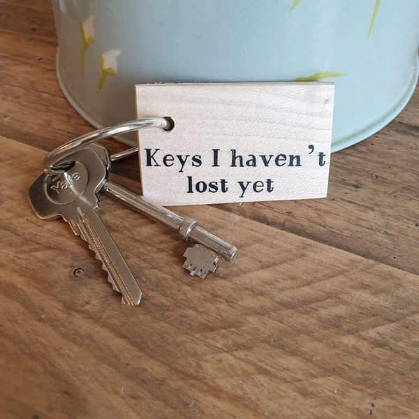 Keys I haven't Lost Yet keyring
