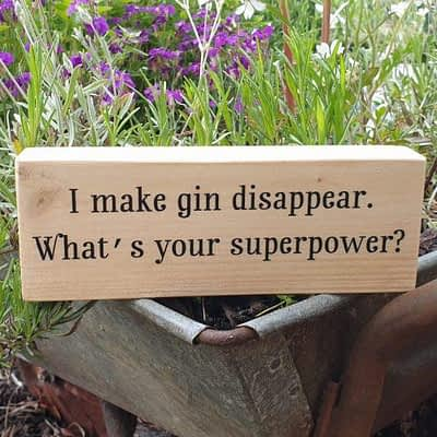 I make gin disappear - Super gift for a Gin Lover!